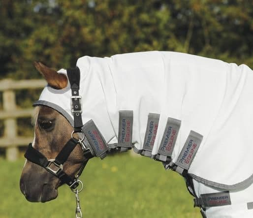 Pony sweet itch buster fly rug with belly flap